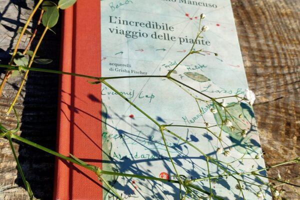 L'incredibile viaggio delle piante di Stefano Mancuso